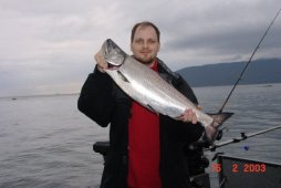A beautiful Chinook Salmon / King Salmon  - © Kanada News