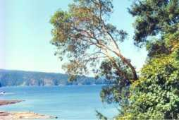 Salt Spring Island has wonderful beaches